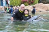 Swimming with the Dolphins in Discovery Cove!