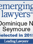Madison County Personal Injury Lawyer Dominique Noelle Seymoure