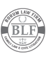 Fort Worth Litigation Lawyer Catherine Ryan Borum