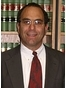 Lincoln Park Litigation Lawyer Michael S Rubin