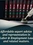 Henrico Employment / Labor Attorney Jay J. Levit