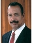 New York Environmental / Natural Resources Lawyer Theodore V. Wells Jr.