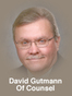 Rochester General Practice Lawyer David J. Gutmann